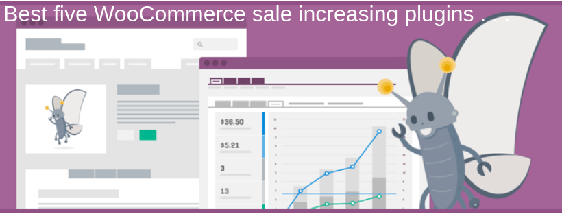 Best five WooCommerce sale increasing plugins